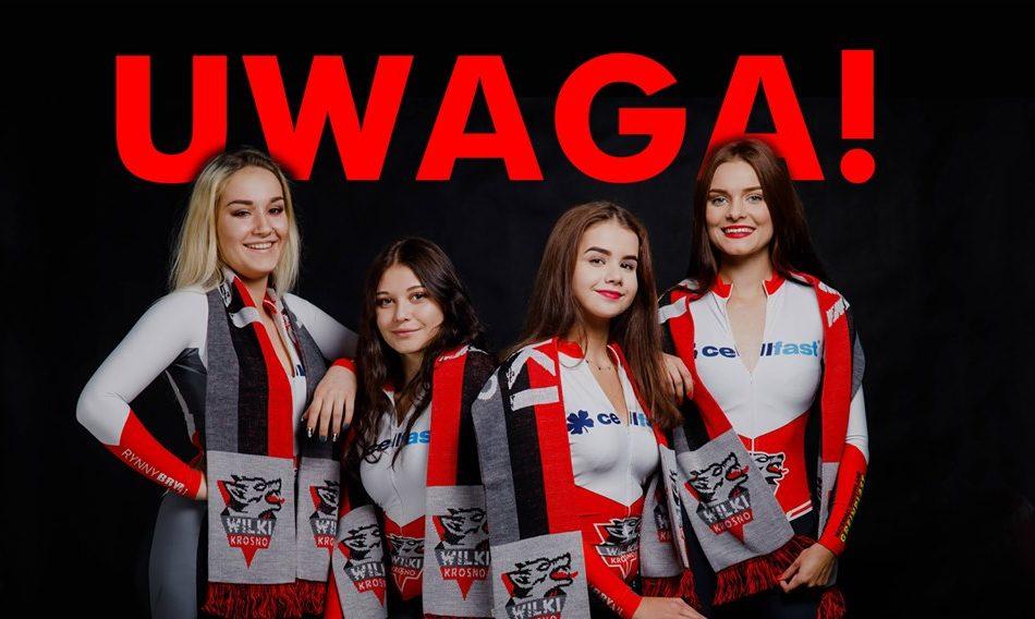 Uwaga dziewczyny! Casting do Wolf Girls Team!